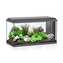 Akvarij Aquatlantis Advance LED 80 (96 L), črn - 80 x 30 x 40 cm