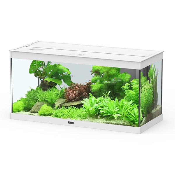 Akvarij Aquatlantis Style 80 (112 L), bel - 80 x 35 x 40 cm