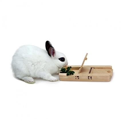 Living World Green, lesena igrača za glodavce - 8 x 17 cm