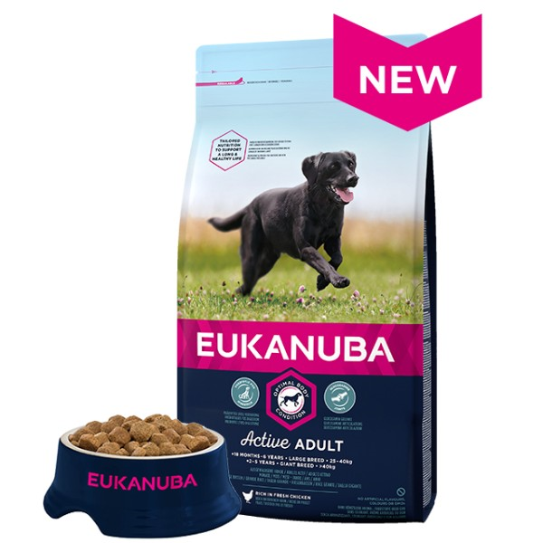 Eukanuba Adult Large - piščanec - 15 kg