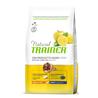 Trainer Natural Adult Small - pršut in riž 3 x 2 kg