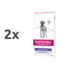 Eukanuba Dermatosis veterinarska dieta za težave s kožo 2 x 12 kg