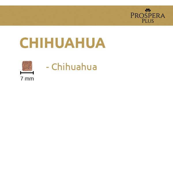 Prospera Plus Chihuahua
