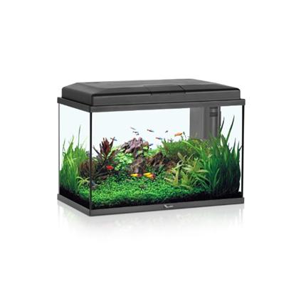 Aquatlantis akvarij Start 55 (57 l), črn - 55 x 30 x 40 cm