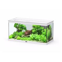 Aquatlantis akvarij Style LED 80, bel - 80 x 35 x 40 cm (102 l)