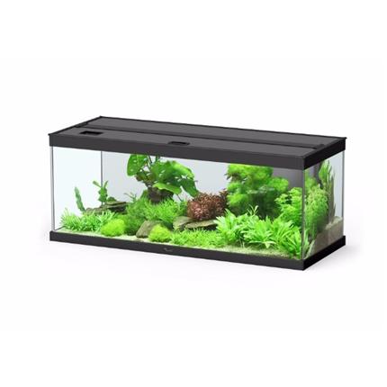 Aquatlantis akvarij Style LED 100, črn - 100 x 40 x 40 cm (146 l)