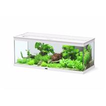 Aquatlantis akvarij Style LED 100, bel - 100 x 40 x 40 cm (146 l)