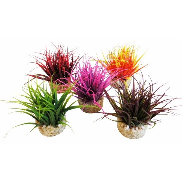 Sydeco dekor Aqua Nano Moss