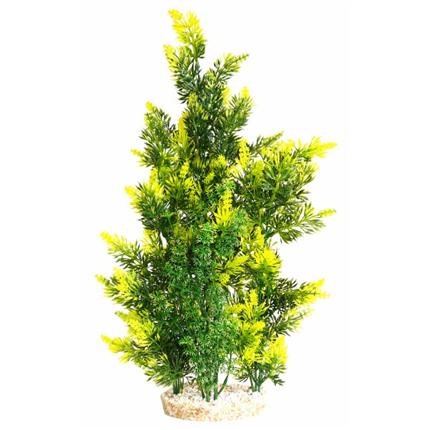 Sydeco dekor Aquaplant Giant