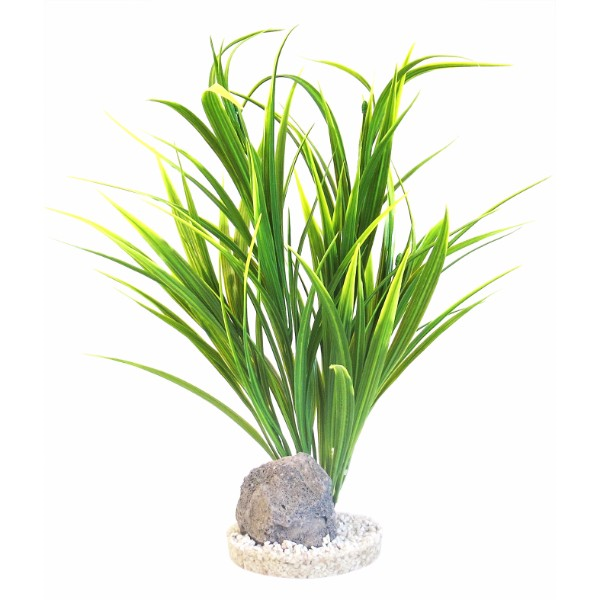 Sydeco dekor Yucca Vivarium