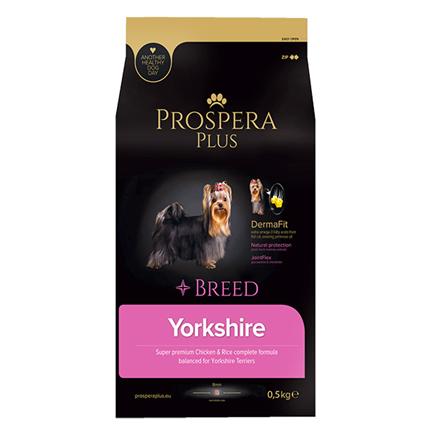 Prospera Plus Yorkshire
