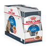 Royal Canin Adult Light - omaka 12 x 85 g