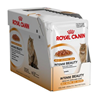 Royal Canin Intense Beauty - žele 12 x 85 g