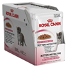 Royal Canin Kitten Instinctive - žele 12 x 85 g