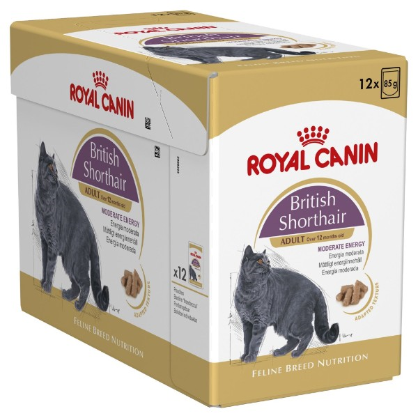 Royal Canin Adult Britanka 12 x 85 g