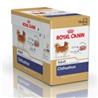 Royal Canin Chihuahua 12 x 85 g