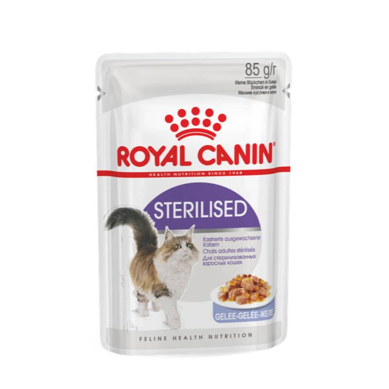 Royal Canin Adult Sterilised - žele