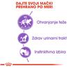 Royal Canin Sterilised - žele