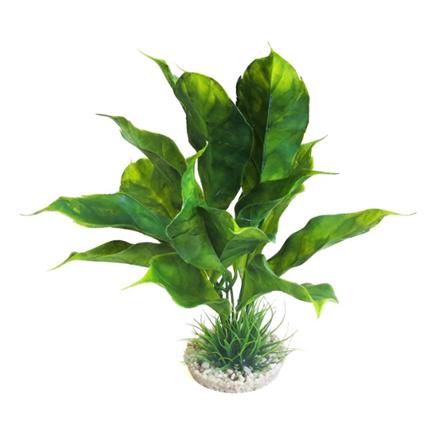 Sydeco dekor Anubias Plant