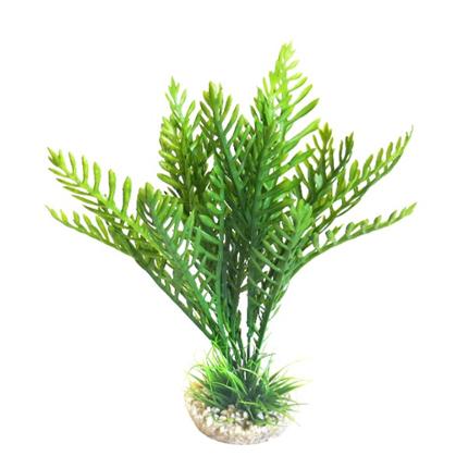 Sydeco dekor Hottonia Plant