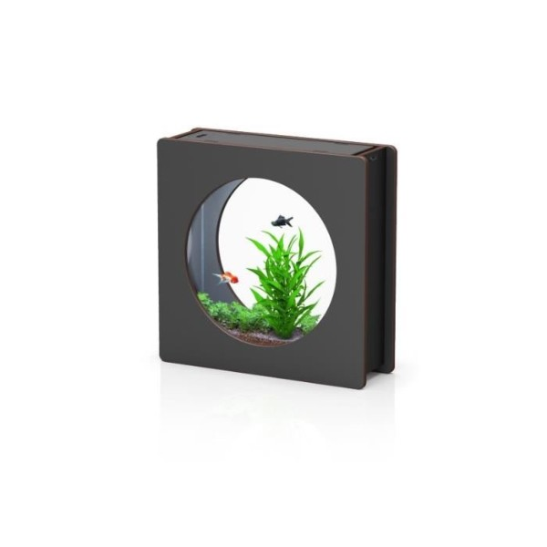 Aquatlantis akvarij Aquafashion, črn - 47 x 15 x 48 cm