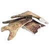 4Pet / WolfPack rogovje damjaka - različne velikosti L (veliko)