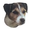 Pasemske nalepke, različne pasme (2 kos) jack russell terier (resasti)