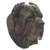 Pasemske nalepke, različne pasme (2 kos) neapeljski mastif
