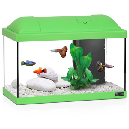 Aquatlantis akvarij Biofun 40, zelen- 41,5 x 20,5 x 30 cm