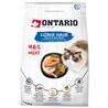 Ontario Cat Longhair - raca in losos 400 g
