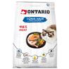 Ontario Cat Longhair - raca in losos 2 kg