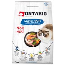 Ontario Cat Longhair - raca in losos