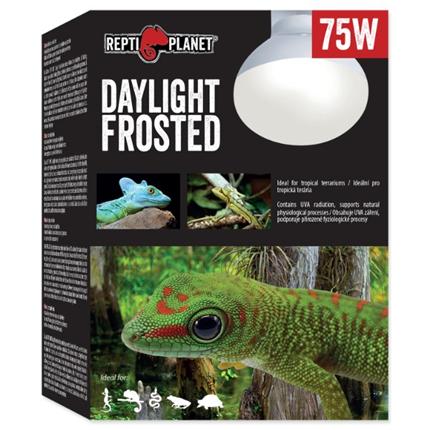 Repti Planet grelna žarnica Daylight Frosted - 75 W