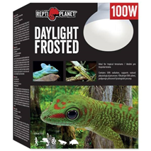 Repti Planet grelna žarnica Daylight Frosted - 100 W