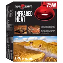 Repti Planet grelna žarnica Infrared Heat - 75 W
