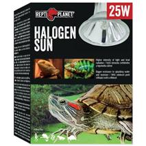 Repti Planet grelna žarnica Halogen Sun - 25 W