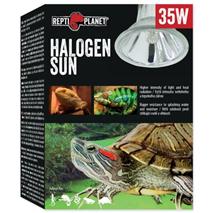 Repti Planet grelna žarnica Halogen Sun - 35 W