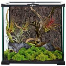 Repti Planet steklen terarij - 30 x 30 x 30 cm