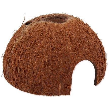 Repti Planet skrivališče kokosov oreh, L