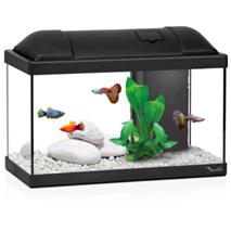 Aquatlantis akvarij Biofun 40, črn - 41,5 x 20,5 x 30 cm