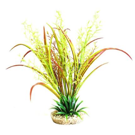 Sydeco dekor Juncus Plant