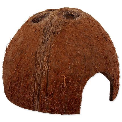 Repti Planet skrivališče kokosov oreh, S