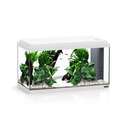 Aquatlantis Bio LED 60 (54 l), bel - 60 x 30 x 34 cm