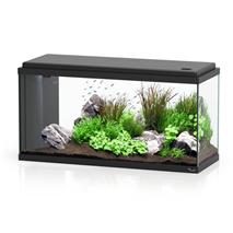 Aquatlantis Bio LED 80 (96 l), črn - 80 x 30 x 40 cm