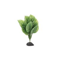 Aquatlantis rastlina za terarij Stripes Plant Green - 30 cm