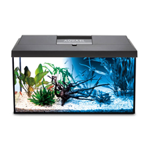 Aquael LED akvarijski set Leddy 60 Day/Night, črn - 60 x 30 x 30 cm