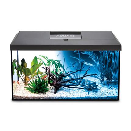 Aquael LED akvarijski set Leddy 75 Day/Night, črn - 75 x 35 x 40 cm