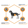 Advance veterinarska dieta Weight Balance Mini