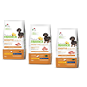 Natural Trainer Sensitive No Gluten Adult Mini - svinjina 3 x 2 kg