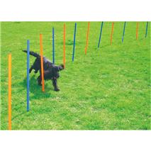 Pawise agility komplet za slalom, 12 kos - 116 cm